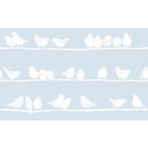 Statik folija kos - Transparent Premium Filippa