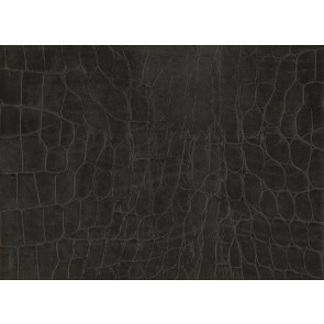 Samolepilna folija kos - Wildlife Kroko črna blister