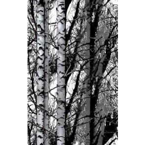 Samolepilna folija kos - Trendyline Wood