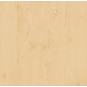 Samolepilna folija kos - Les breza