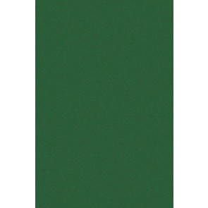 Samolepilna folija kos - Velur zelena
