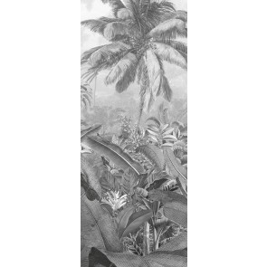 Fototapeta - Amazonia Black and White Panel