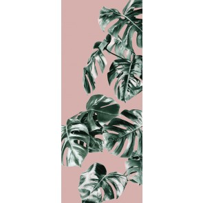 Fototapeta - Monstera Rose Panel