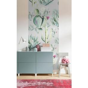 Fototapeta - Cactus Grey Panel