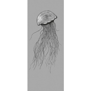 Fototapeta - Jellyfish Panel