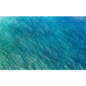 Fototapeta - Blaupause