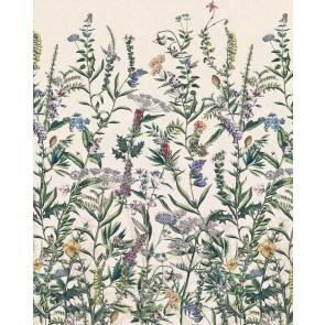 Fototapeta - Flowering Herbs