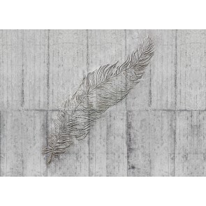 Fototapeta - Concrete Feather