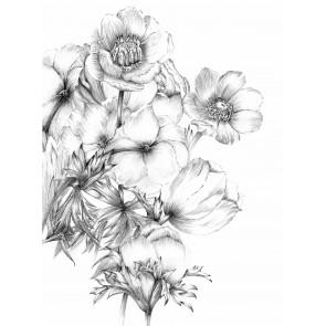 Fototapeta - Embroidery